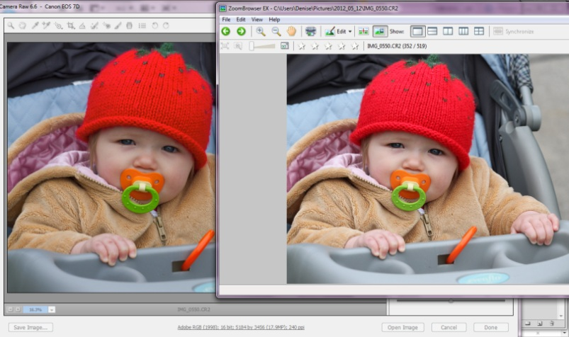 Click image for larger version.  Name:Color Saturation.jpg Views:478 Size:111.8 KB ID:1029