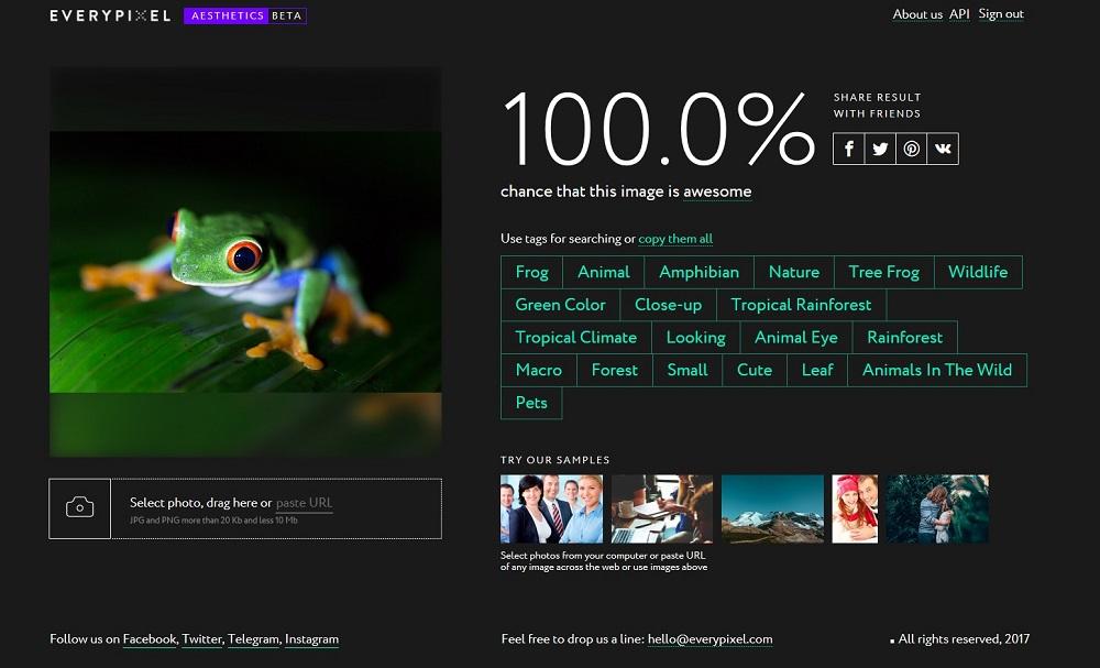 Name:  everypixel frog 2.jpg Views: 84 Size:  126.3 KB