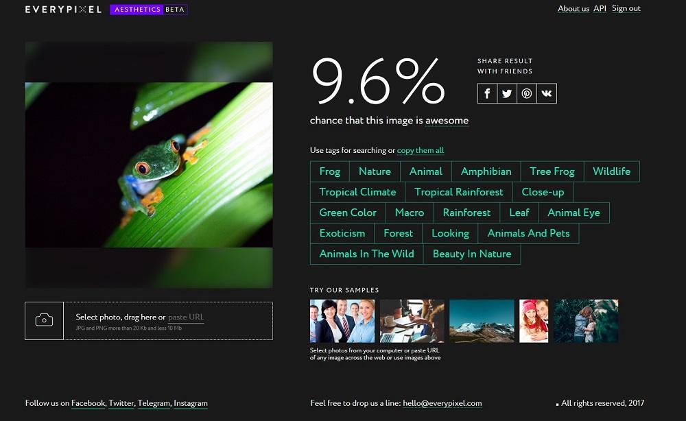 Name:  everypixel frog 3.jpg Views: 84 Size:  135.8 KB